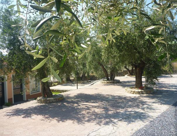 Parking gratuit | Services du Villaggio Borgoverde à Imperia